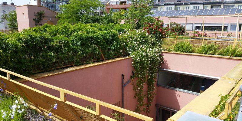 semiintensiv begrüntes Biodiversitätsdach rund um einen Innenhof