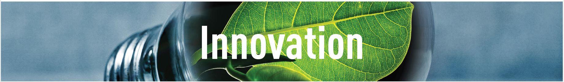 Schriftzug Innovation im Hintergrund Glühbirne mit Blättern darin