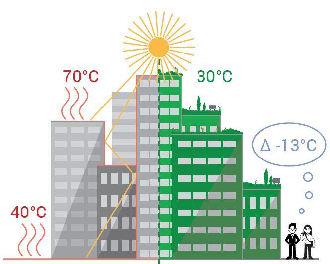 Grafik Stadt links unbegrünt rechts begrünt, in der mitte Sonne. Kühlungswirkung bis 13 Grad