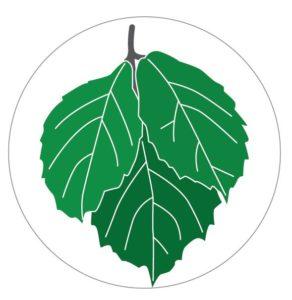 Grafik Blätter einer Kletterpflanze