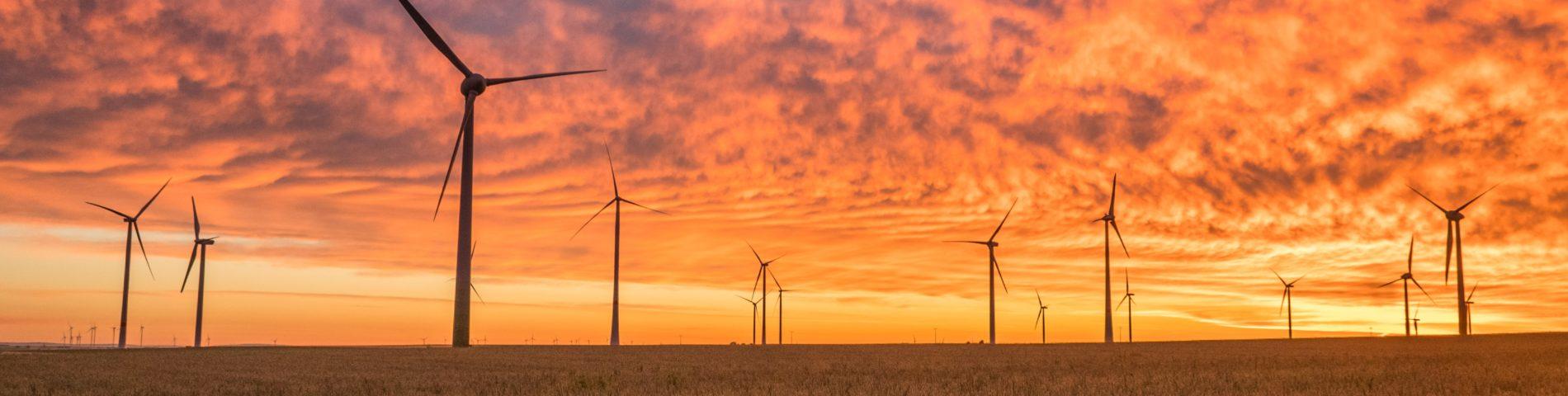 Windräder in Feldern im Sonnenuntergang