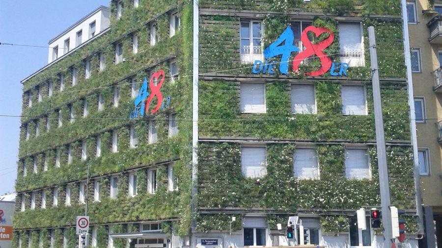 MA48 wandgebundene Fassadenbegrünung