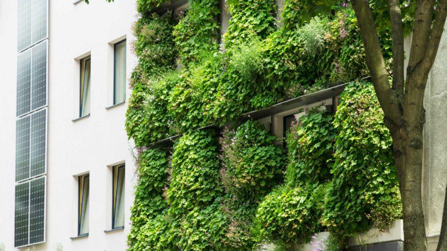 Straßenansicht Boutiquehotel © Dachgrün