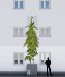 50 Grüne häuser Variante4-Netz
