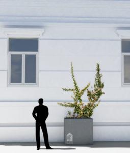 50 Grüne Häuser Variante6-selbstklimmer
