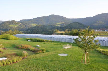 MUSEUM LIAUNIG Bewässerung Dachbegrünung und Grünflächen Skulpturenpark