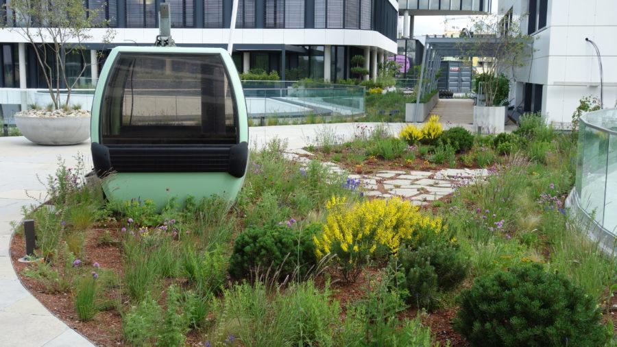Dachgarten Merkur Campus, Graz