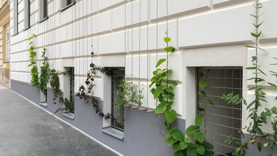 Begrüntes Gebäude