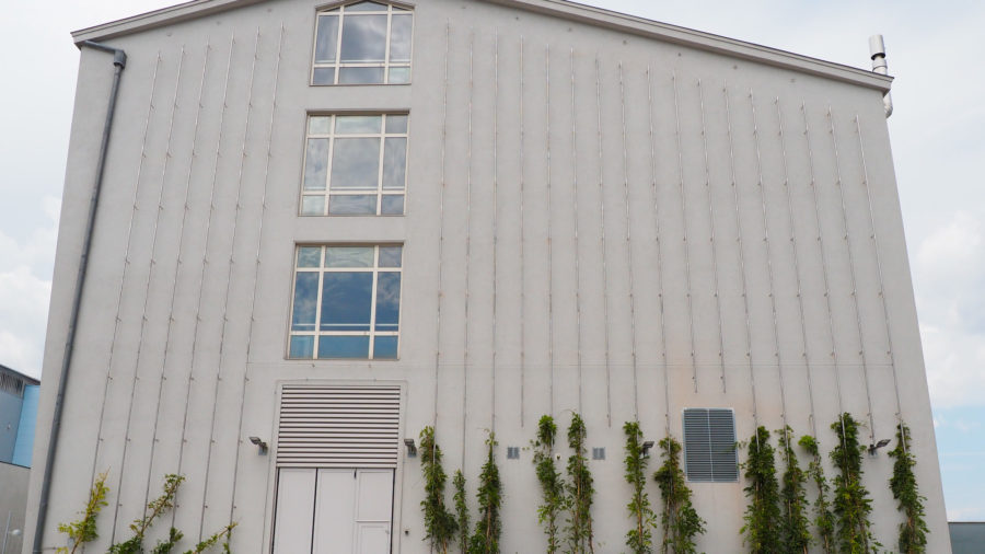 Fassadenasicht (Südseite)