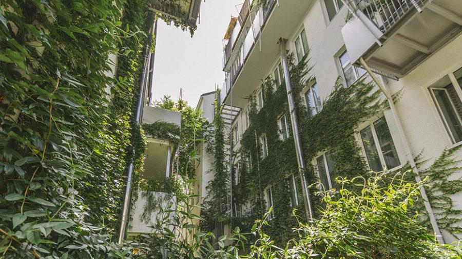 Projekt GARDEN STATE, Marktgasse 8-10, 1090 Wien