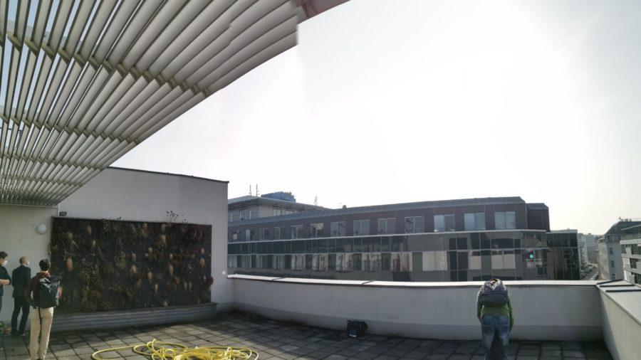 Fassadenbegrünung Dachterrasse Schule Diefenbachgasse
