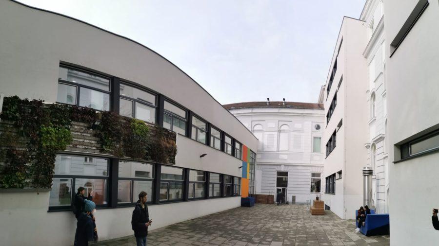 Fassadenbegrünung Innenhof Schule Schuhmeierplatz
