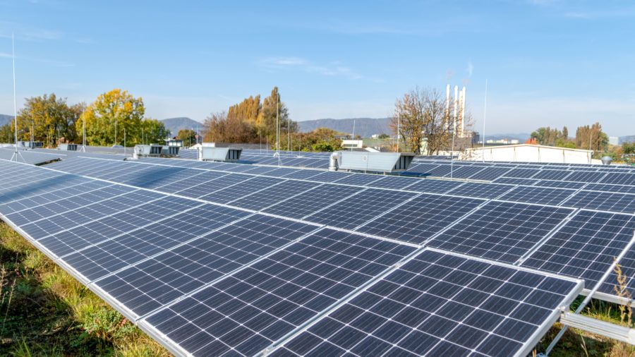 Solargründach - Werkstattshalle, Graz Holding © achtzigzehn/Jane Hinterleitner